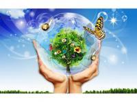 Краткосрочные проекты по экологическому воспитанию